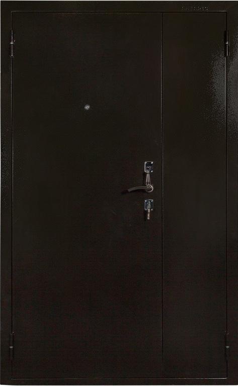 двери входные в царицыно